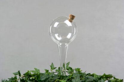 Bevattningsglas Klot miljö