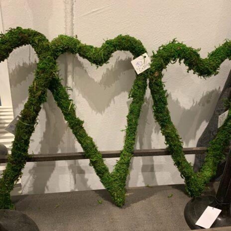 Mosshjärta miljö
