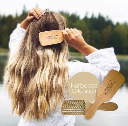 Hjärtligt hårborste cirkulation